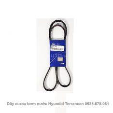 Dây curoa bơm nước Hyundai Terrancan